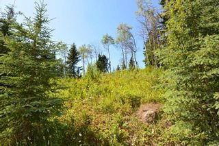 "Photo 19: LOT 1 HISLOP Road in Smithers: Smithers - Rural Land for sale in ""Hislop Road Area"" (Smithers And Area (Zone 54))  : MLS®# R2491414"