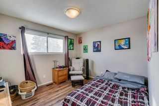 Photo 3: 168 Dover Meadow Close SE in Calgary: Dover Detached for sale : MLS®# A1082428