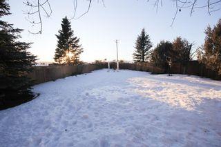 Photo 30: 33 Sunset Crescent: Okotoks Detached for sale : MLS®# A1061519
