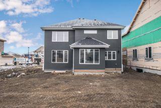 Photo 44: 4419 Suzanna Crescent in Edmonton: Zone 53 House for sale : MLS®# E4211290