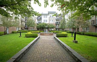 """Photo 1: 411 5430 201 Street in Langley: Langley City Condo for sale in """"Sonnet"""" : MLS®# R2304221"""