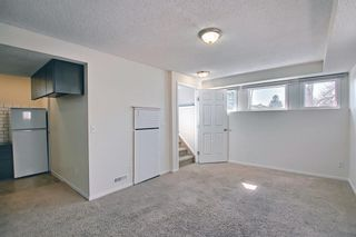 Photo 32: 66 Erin Green Way SE in Calgary: Erin Woods Detached for sale : MLS®# A1094602
