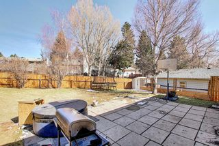 Photo 45: 6115 Dalcastle Crescent NW in Calgary: Dalhousie Detached for sale : MLS®# A1096650
