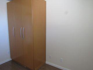 Photo 9: 30 Geneva Crescent in St. Albert: Basement Suite for rent