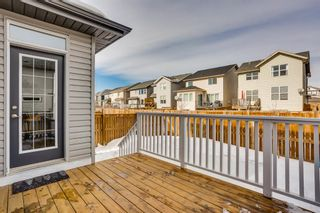 Photo 27: 114 CHAPARRAL VALLEY Square SE in Calgary: Chaparral Detached for sale : MLS®# A1074852