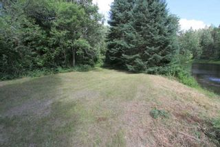 Photo 23: 300 Pinery Road in Kawartha Lakes: Rural Somerville Property for sale : MLS®# X4840235