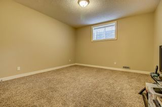 Photo 41: 271 Discovery Ridge Boulevard SW in Calgary: Discovery Ridge Detached for sale : MLS®# A1136188