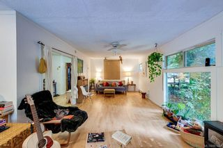 Photo 15: 6081 Old West Saanich Rd in : SW West Saanich House for sale (Saanich West)  : MLS®# 887444