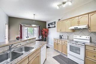 Photo 16: 139 Saddlecrest Gardens NE in Calgary: Saddle Ridge Detached for sale : MLS®# A1142059