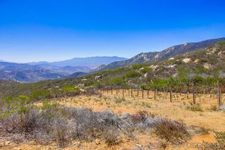 Photo 46: JAMUL House for sale : 4 bedrooms : 15399 Isla Vista Rd