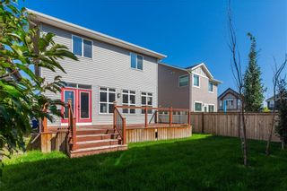 Photo 33: 166 Cranford Green SE in Calgary: Cranston Detached for sale : MLS®# A1062249