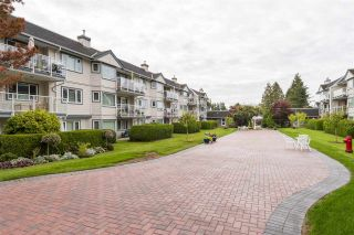 Photo 2: 105 13965 16 Avenue in Surrey: Sunnyside Park Surrey Condo for sale (South Surrey White Rock)  : MLS®# R2312080