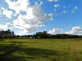 Photo 11: Rge Rd 231 North of Twp Rd 564: Rural Sturgeon County Rural Land/Vacant Lot for sale : MLS®# E4262842
