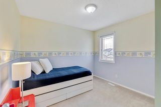 Photo 33: 18 Copperfield Crescent SE in Calgary: Copperfield Detached for sale : MLS®# A1141643