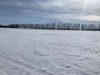 Photo 13: RR 25 HWY 661: Rural Westlock County Rural Land/Vacant Lot for sale : MLS®# E4236665