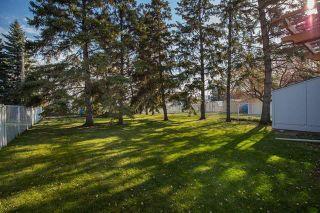 Photo 19: 317 Ronald Street in Winnipeg: Grace Hospital Residential for sale (5F)  : MLS®# 1907041