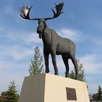 Photo 9: Over one acre lots in Hudson Bay: Lot/Land for sale : MLS®# SK850477