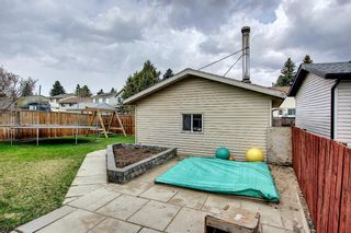 Photo 29: 80 Erin Grove Close SE in Calgary: Erin Woods Detached for sale : MLS®# A1107308