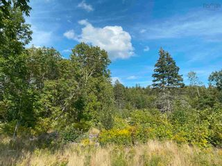 Photo 8: Lot Manse Road in Kenzieville: 108-Rural Pictou County Vacant Land for sale (Northern Region)  : MLS®# 202122852