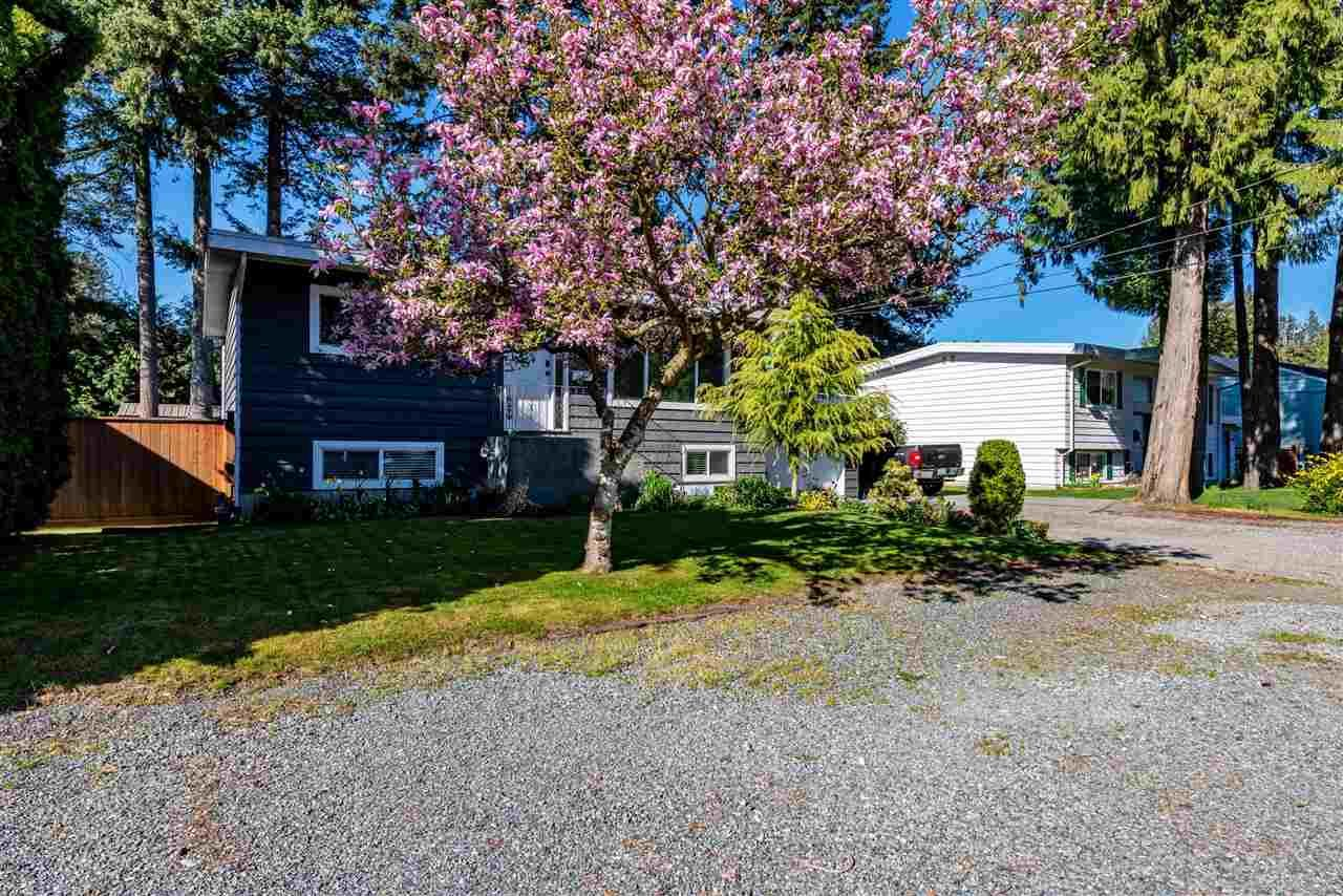 Photo 3: Photos: 34539 KENT Avenue in Abbotsford: Abbotsford East House for sale : MLS®# R2569540