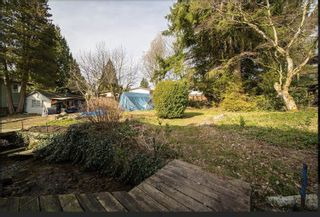 Photo 6: 3531 ALLAN Road in North Vancouver: Lynn Valley House for sale : MLS®# R2542346