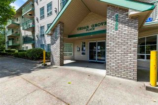 """Photo 3: 206 2435 CENTER Street in Abbotsford: Abbotsford West Condo for sale in """"Cedar Grove Place"""" : MLS®# R2592183"""