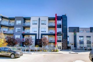 Main Photo: 212 8531 8A Avenue SW in Calgary: West Springs Apartment for sale : MLS®# A1153444