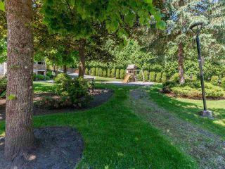 "Photo 31: 56 1140 FALCON Drive in Coquitlam: Eagle Ridge CQ Townhouse for sale in ""FALCON GATE"" : MLS®# R2588186"