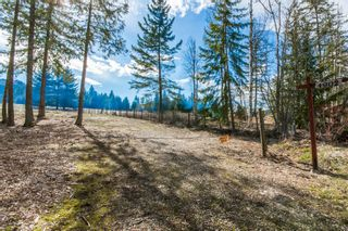 Photo 23: 4902 Parker Road in Eagle Bay: Vacant Land for sale : MLS®# 10132680