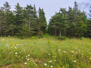 Photo 4: Lot Nollett Beckwith Road in Ogilvie: 404-Kings County Vacant Land for sale (Annapolis Valley)  : MLS®# 202120227