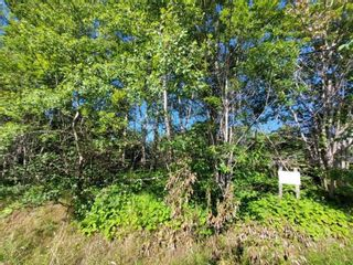 Photo 4: Lot Lighthouse Road in Bay View: 401-Digby County Vacant Land for sale (Annapolis Valley)  : MLS®# 202119924