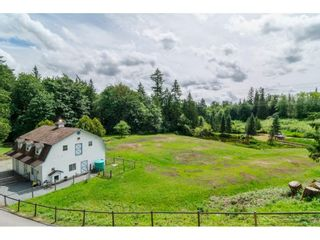 Photo 4: 3873 216 STREET in Langley: Brookswood Langley House for sale : MLS®# R2114161