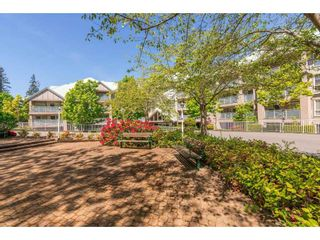 """Photo 26: 307 15150 29A Avenue in Surrey: King George Corridor Condo for sale in """"The Sands 2"""" (South Surrey White Rock)  : MLS®# R2464623"""