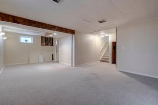 Photo 39: 139 Cantrell Place SW in Calgary: Canyon Meadows Detached for sale : MLS®# A1096230