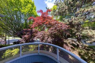 Photo 35: 305 7520 COLUMBIA Street in Vancouver: Marpole Condo for sale (Vancouver West)  : MLS®# R2582305