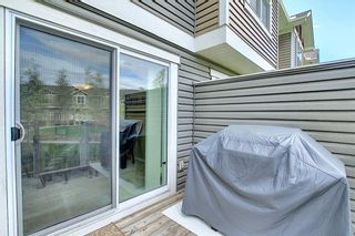 Photo 29: 224 CRANBERRY Park SE in Calgary: Cranston Row/Townhouse for sale : MLS®# C4299490