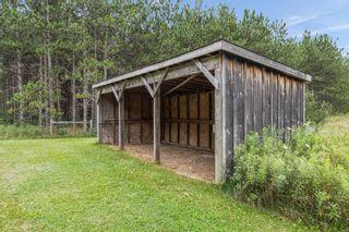 Photo 28: 796149 E 3rd Line in Mulmur: Rural Mulmur House (2-Storey) for sale : MLS®# X5340569