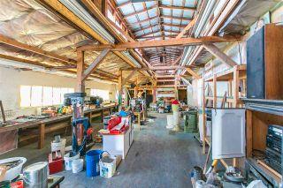 Photo 28: 4411 41B Street in Delta: Ladner Rural House for sale (Ladner)  : MLS®# R2579814