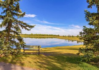 Photo 23: 2212 6224 17 Avenue SE in Calgary: Red Carpet Apartment for sale : MLS®# A1115091