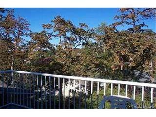 Photo 7: 3918 Ascot Dr in VICTORIA: SE Cedar Hill House for sale (Saanich East)  : MLS®# 268994