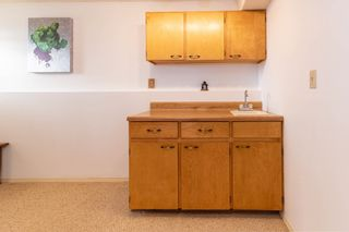 Photo 40:  in Edmonton: Zone 16 House for sale : MLS®# E4263667