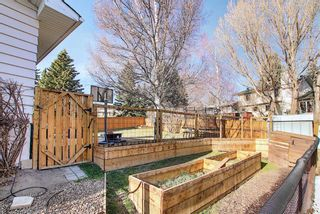 Photo 48: 6115 Dalcastle Crescent NW in Calgary: Dalhousie Detached for sale : MLS®# A1096650