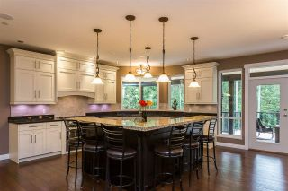 Photo 8: 1408 CRYSTAL CREEK Drive: Anmore House for sale (Port Moody)  : MLS®# R2544470