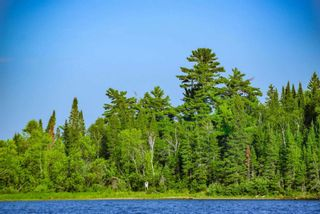 Photo 3: Lot 8 Five Point Island in South of Kenora: Vacant Land for sale : MLS®# TB212085