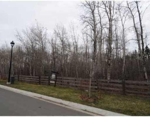 Main Photo: 17604 45 Avenue in Edmonton: Zone 20 Vacant Lot for sale : MLS®# E4235551