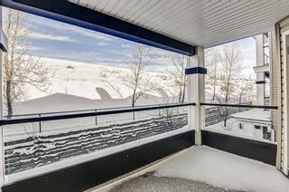 Photo 29: 214 369 Rocky Vista Park NW in Calgary: Rocky Ridge Apartment for sale : MLS®# A1071996