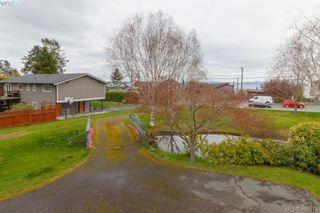 Photo 8: 5074 Cordova Bay Rd in VICTORIA: SE Cordova Bay House for sale (Saanich East)  : MLS®# 810941