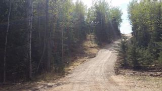 Photo 34: ON Highway 27: Rural Mountain View County Land for sale : MLS®# A1012349
