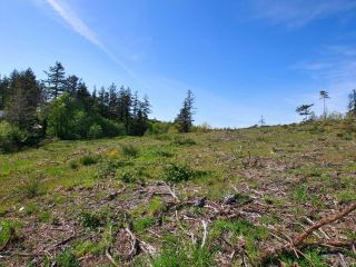 Photo 13: PCL A Curtis Rd in COMOX: CV Comox Peninsula Land for sale (Comox Valley)  : MLS®# 811298