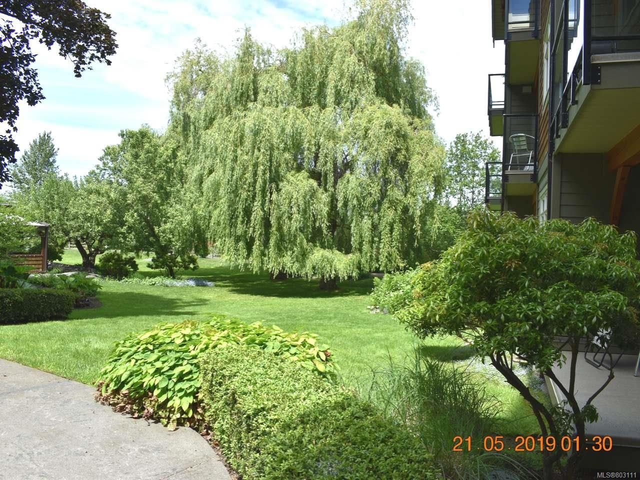 Main Photo: 107 1800 Riverside Lane in COURTENAY: CV Courtenay City Condo for sale (Comox Valley)  : MLS®# 803111